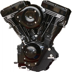 ENGINE V124 BLK ED G CARB