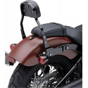 RESPALDO DETACHABLE COBRA MINI BK FXLR18